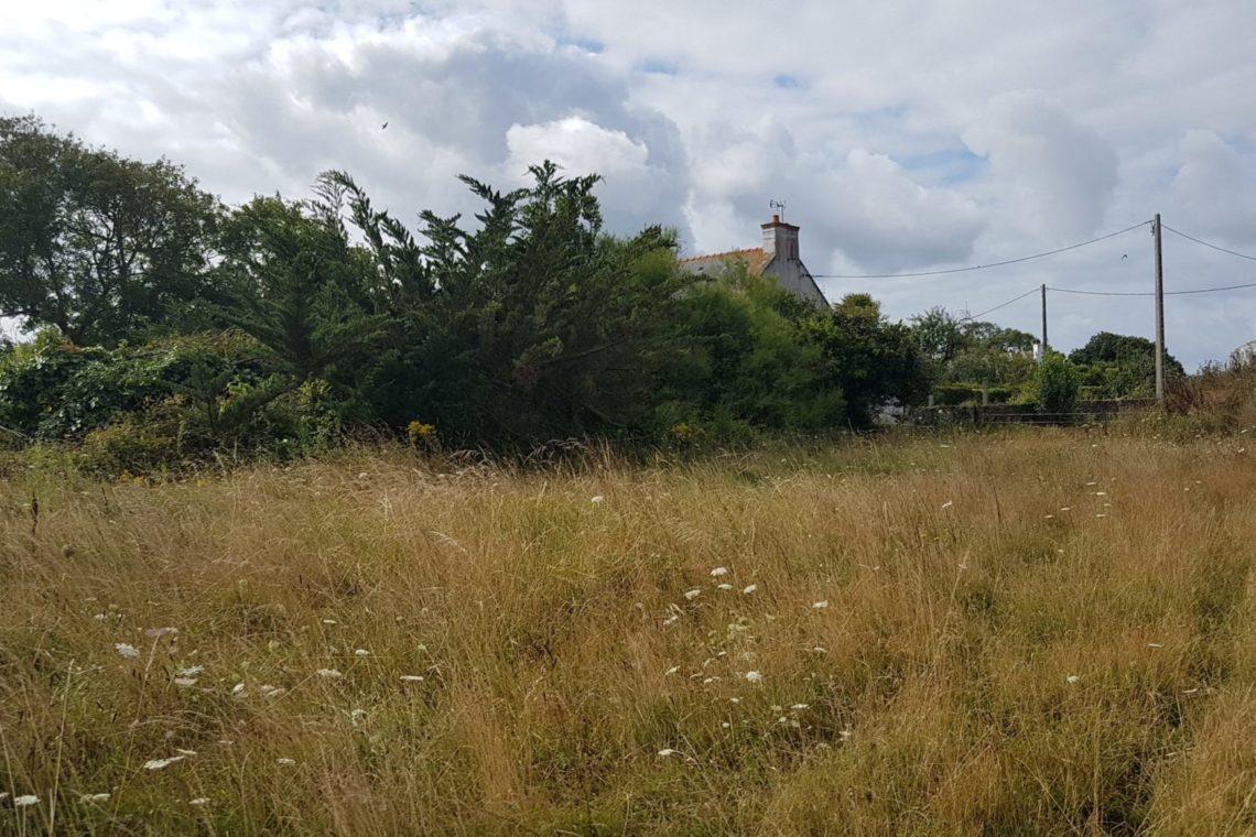 0527-terrain-belleileenmer